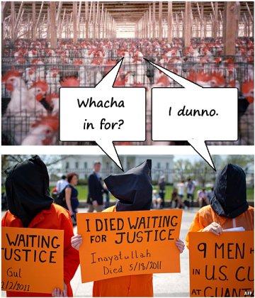Guantanachicken
