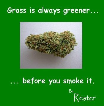grassisalwaysgreener